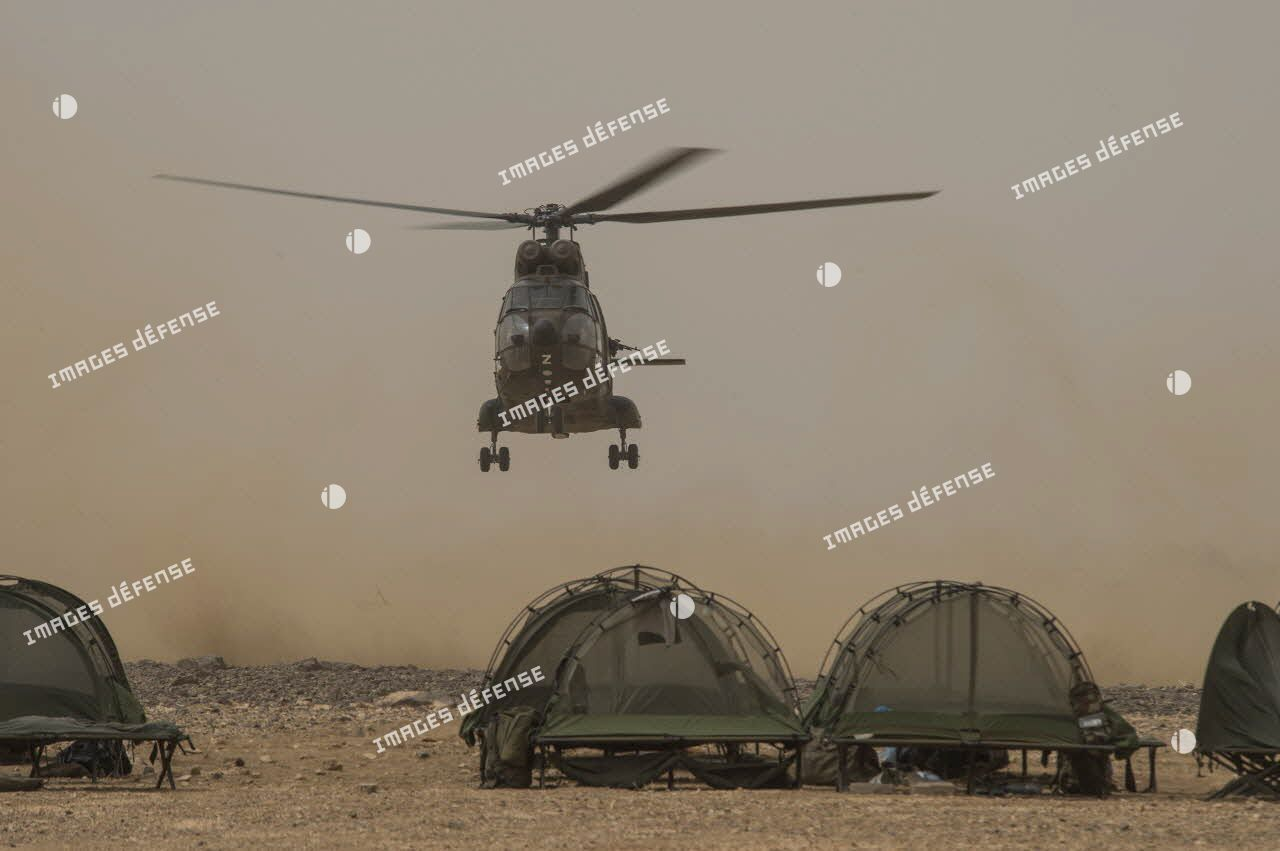 Atterrissage d'un hélicoptère Puma SA-330 sur la base opérationnelle avancée temporaire (BOAT) du 126e régiment d'infanterie (126e RI) dans le désert malien.