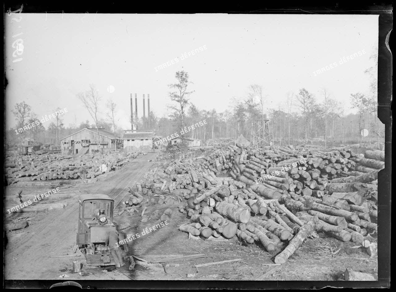 Près de Saint Dizier, Haute Marne. Exploitation forestière américaine. Les bois amenés près de la scierie. [légende d'origine]