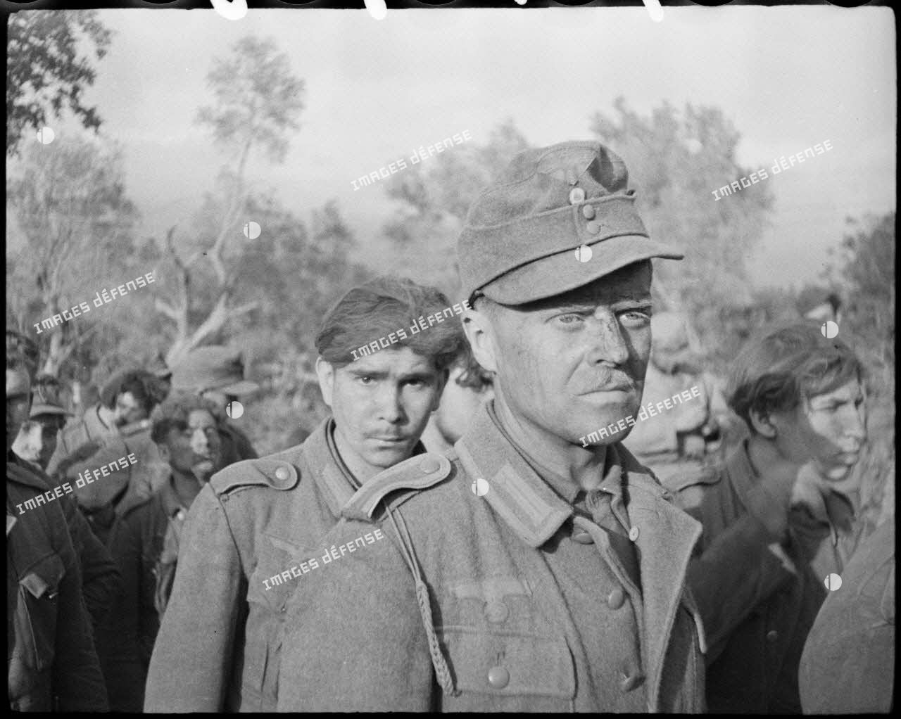 Des fantassins allemands, appartenant probablement à la 71. Infanterie-Division (division d'infanterie) et faits prisonniers lors de la prise de Castelforte par la 3e division d'infanterie algérienne (DIA), sont rassemblés avant d'être fouillés.
