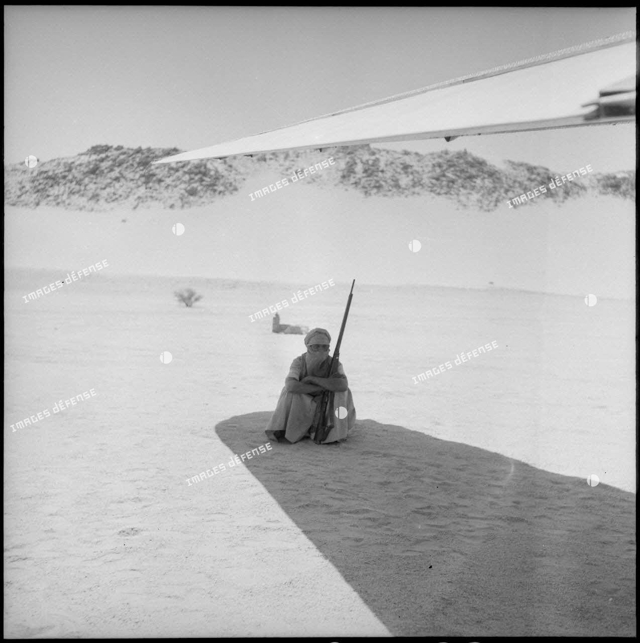 Le garde de l'avion de Max Lejeune veille à l'ombre d'une aile.