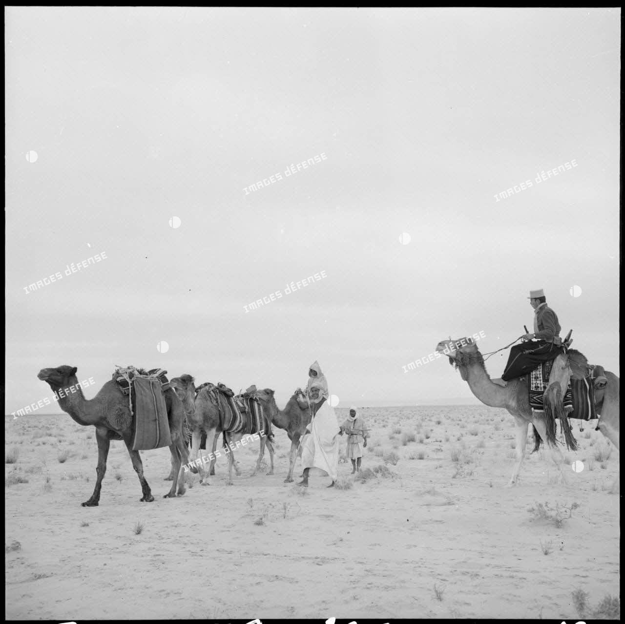 La patrouille de méharistes de la compagnie méhariste de l'erg oriental (CMEO) laisse repartir une caravane après un contrôle dans la région d'El Oued.