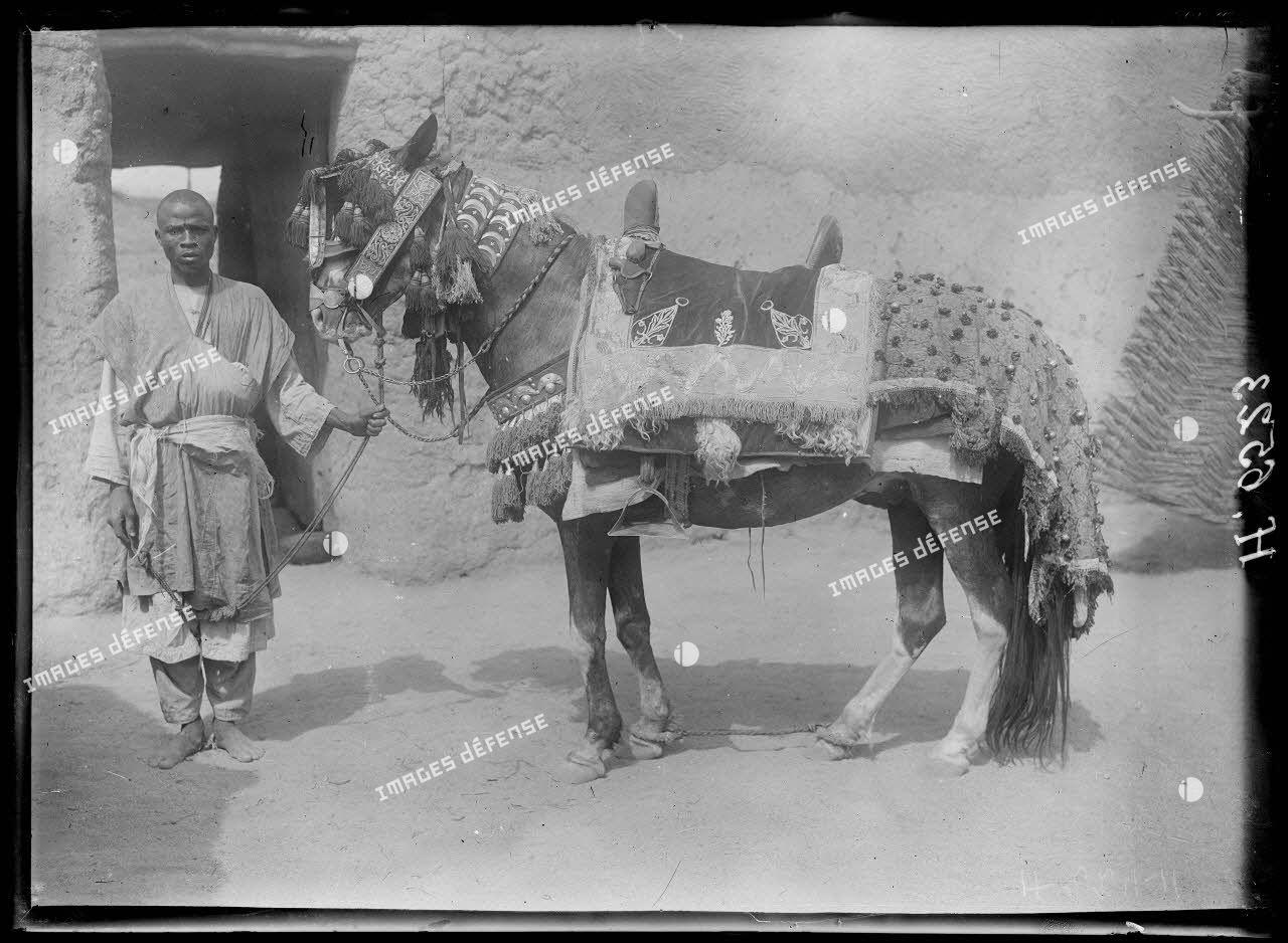 Mora. Le cheval du lamido caparaçonné. [légende d'origine]
