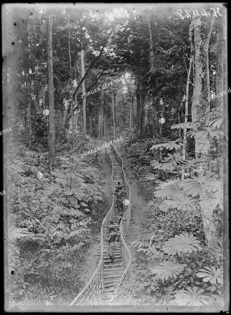 Chemin de fer du centre. Chemin de rondinage menant à la tombe du sous-lieutenant Molières, tué le 16 décembre 1915. [légende d'origine]