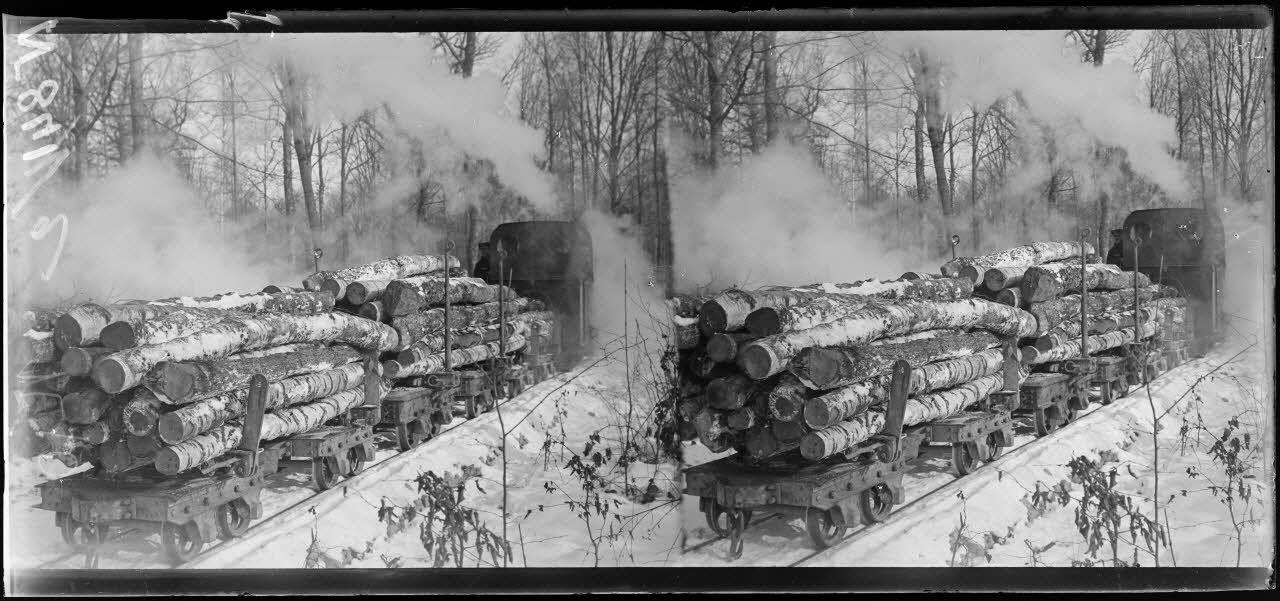 Près de Verrières (Marne). Transport d'arbres par chemin de fer  à voie de 0.60 m. [légende d'origine]