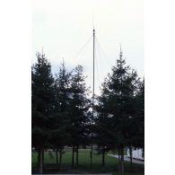 Antenne de transmissions radio implantée au milieu de jeunes sapins.