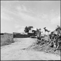 Position égyptienne d'Ali Montar (ou Al Montar) dans le secteur de Gaza.