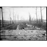 Près de Vacherauville (Meuse). Péniches ayant servi aux troupes pour se défiler avant l'attaque du 15 décembre 1916 et coulées dans le canal. [légende d'origine]