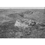 V2672 / 14. Lisière de Cachy (Somme). Nos premières lignes de tranchées.