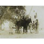 Casernement du plateau - le cheval du capitaine. Tisserandet. Laurent (15 grammes) et son chien. [légende d'origine]