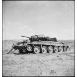 Epave d'un char britannique Crusader II sur le champ de bataille de Kasserine.