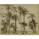 Album  Egypte, page 4.