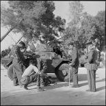 Perception de Daimler Ferret par le 12e régiment de dragons (RD), secteur de Sonis.